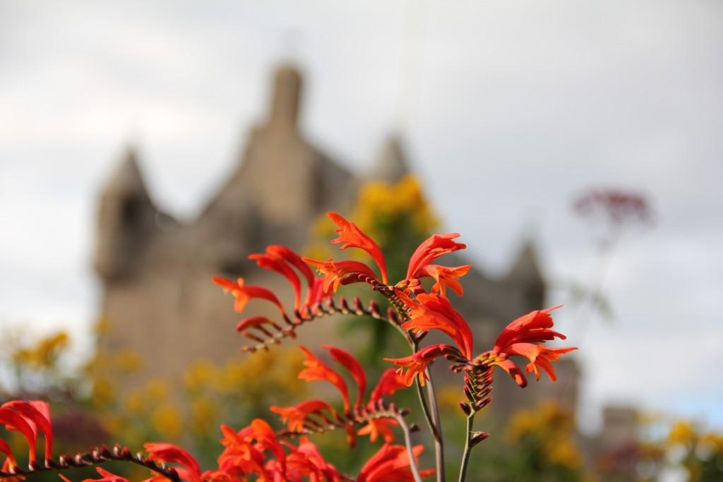 Kultur ist in Schottland wie in England häufig mit Botanik verbunden. Hier der Garten von Cawdor Castle.