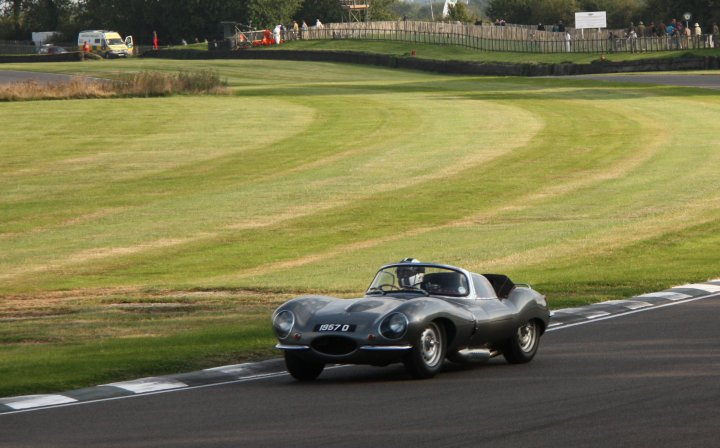 Vroaaaah! Jaguar D-Type beim Rennen auf Goodwood.